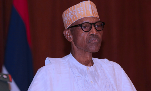 NANS To Buhari: Reshuffle your cabinet, appoint competent, vibrant, ministers
