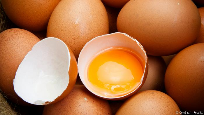 Tainted Egg Scandal Hits 17 European Countries