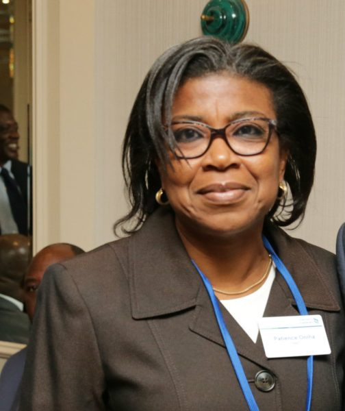 Nigeria to raise N1.64trn in foreign, domestic market