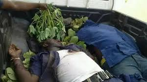 Herdsmen Kill Two Civil Defence Officers in Devastating Ambush