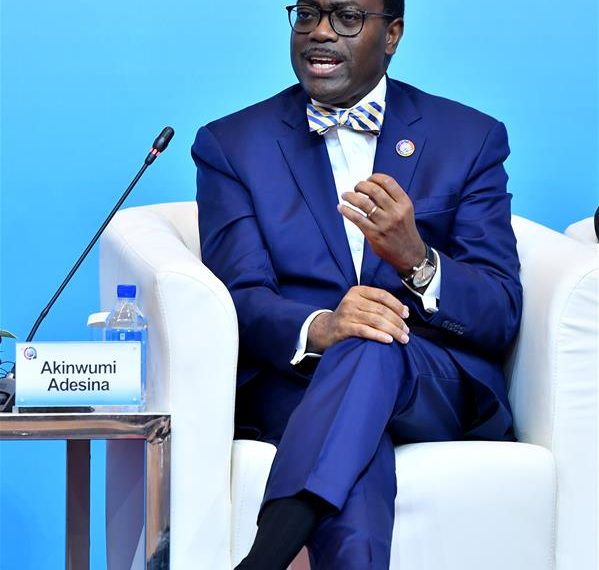 """esident of the African Development Bank, speaks at a panel with the theme """"Enhancing Infrastructure Cooperation for Sustainable Development"""" during the High-level Dialogue Between Chinese and African Leaders and Business Representatives, also the Sixth Conference of Chinese and African Entrepreneurs, in Beijing, capital of China, Sept. 4, 2018."""
